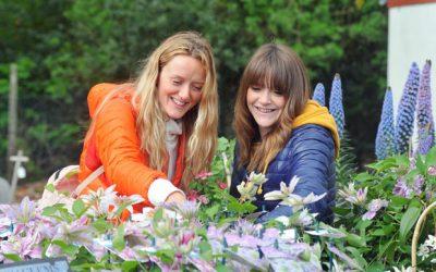 2020 Harrogate Spring Flower Show